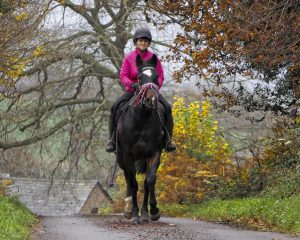 Recreational Riding on the Common